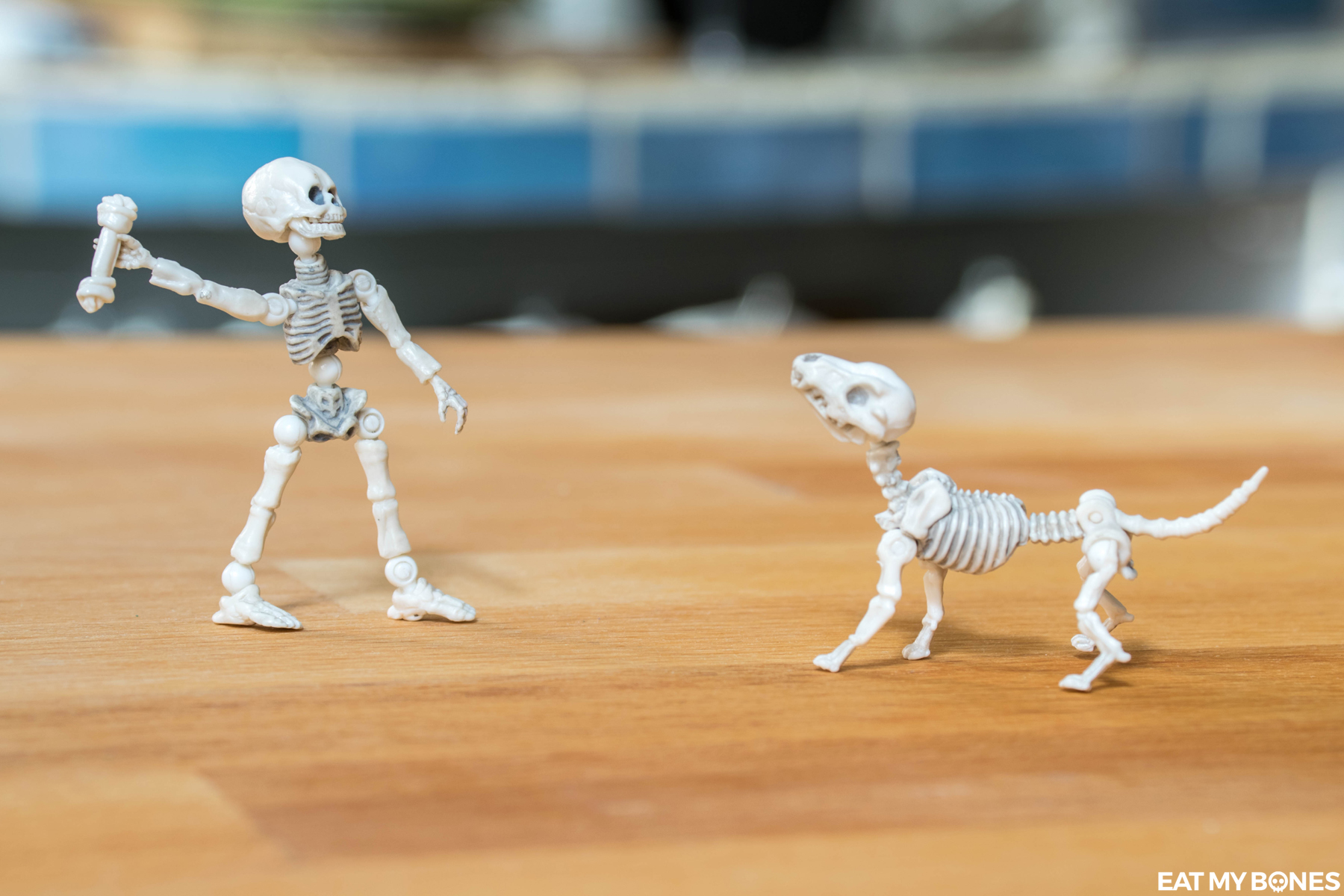 Eat my Bones Friday Skeleton Toy Photography Squelette