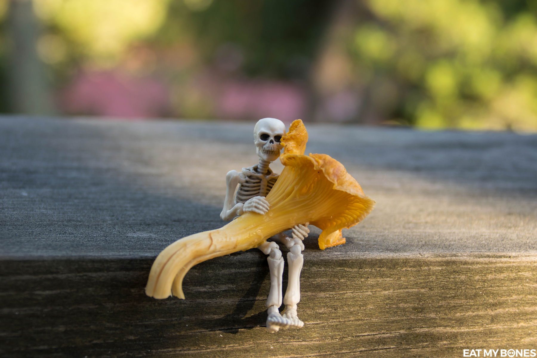 Sweden trip : Forest walk - Pose Skeleton - Toy photography - Miniature - Eat my Bones