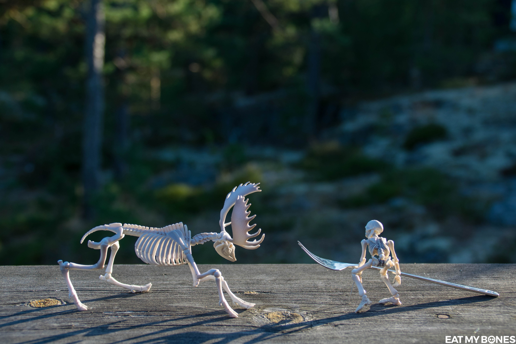 Sweden : playing together - Pose Skeleton - Toy photography - Miniature - Eat my Bones