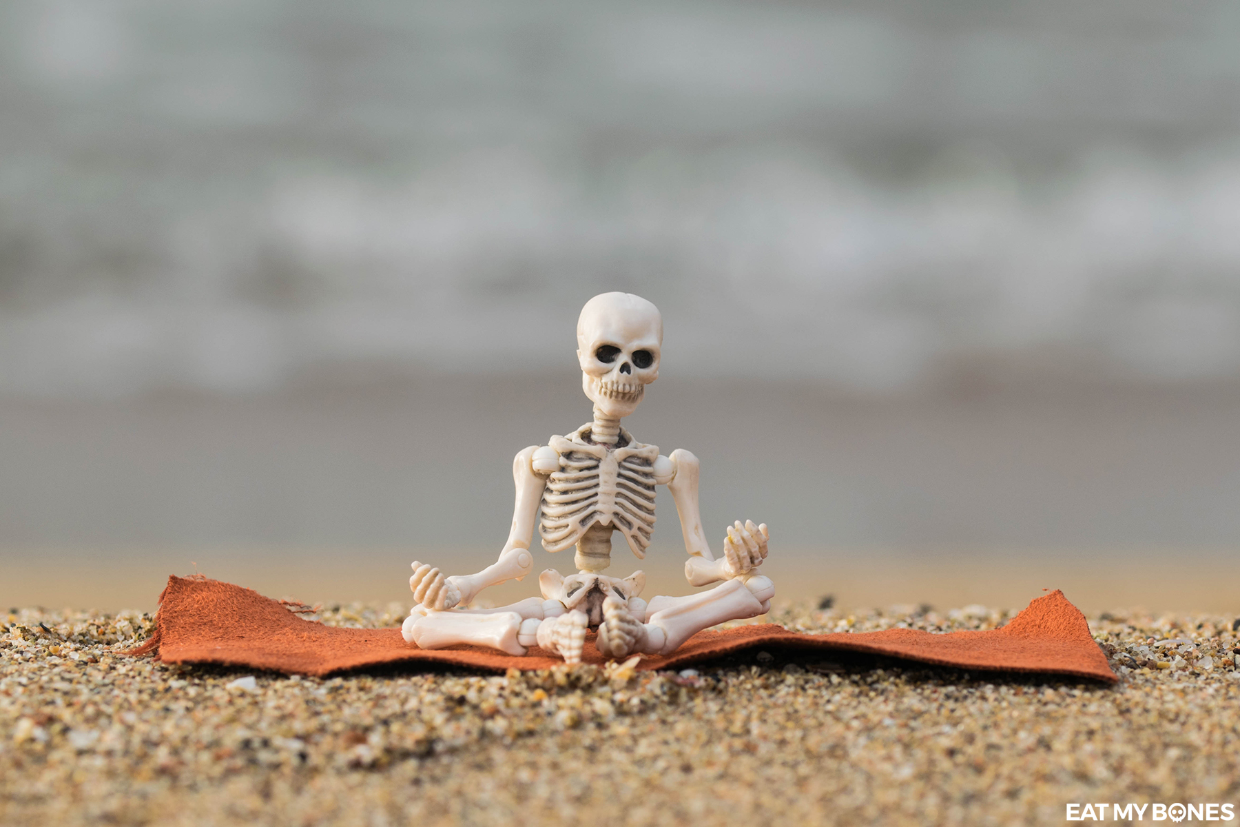 Morning Yoga on the beach - Pose Skeleton - Toy photography - Miniature - Eat my Bones