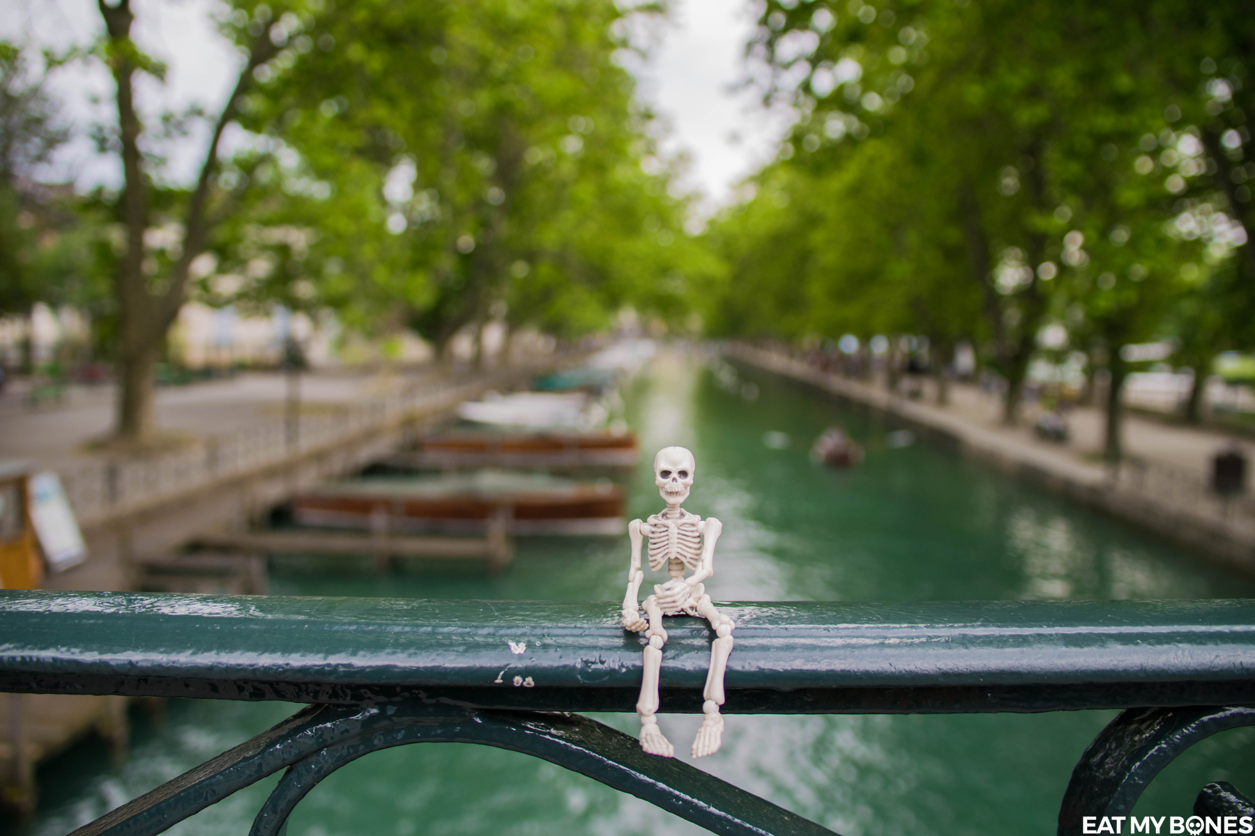 Annecy - Pose Skeleton - Toy photography - Miniature - Eat my Bones