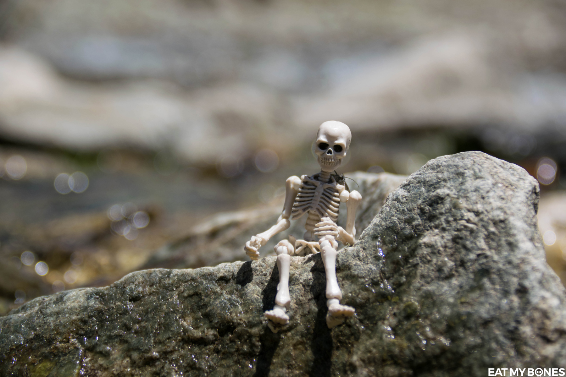 Mercantour hiking - Pose Skeleton - Toy photography - Miniature - Eat my Bones