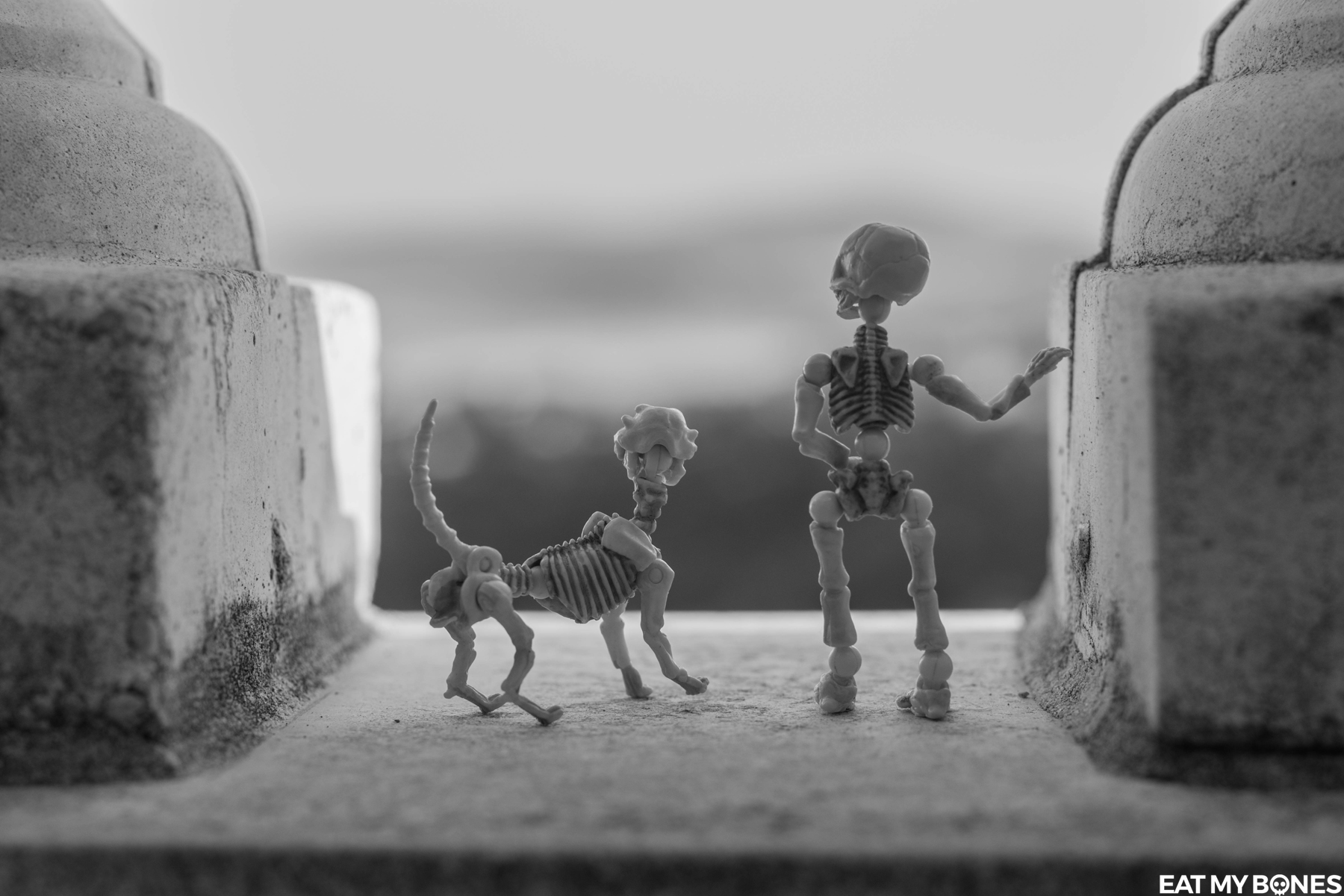 Pose Skeleton - Toy photography - Miniature - Eat my Bones