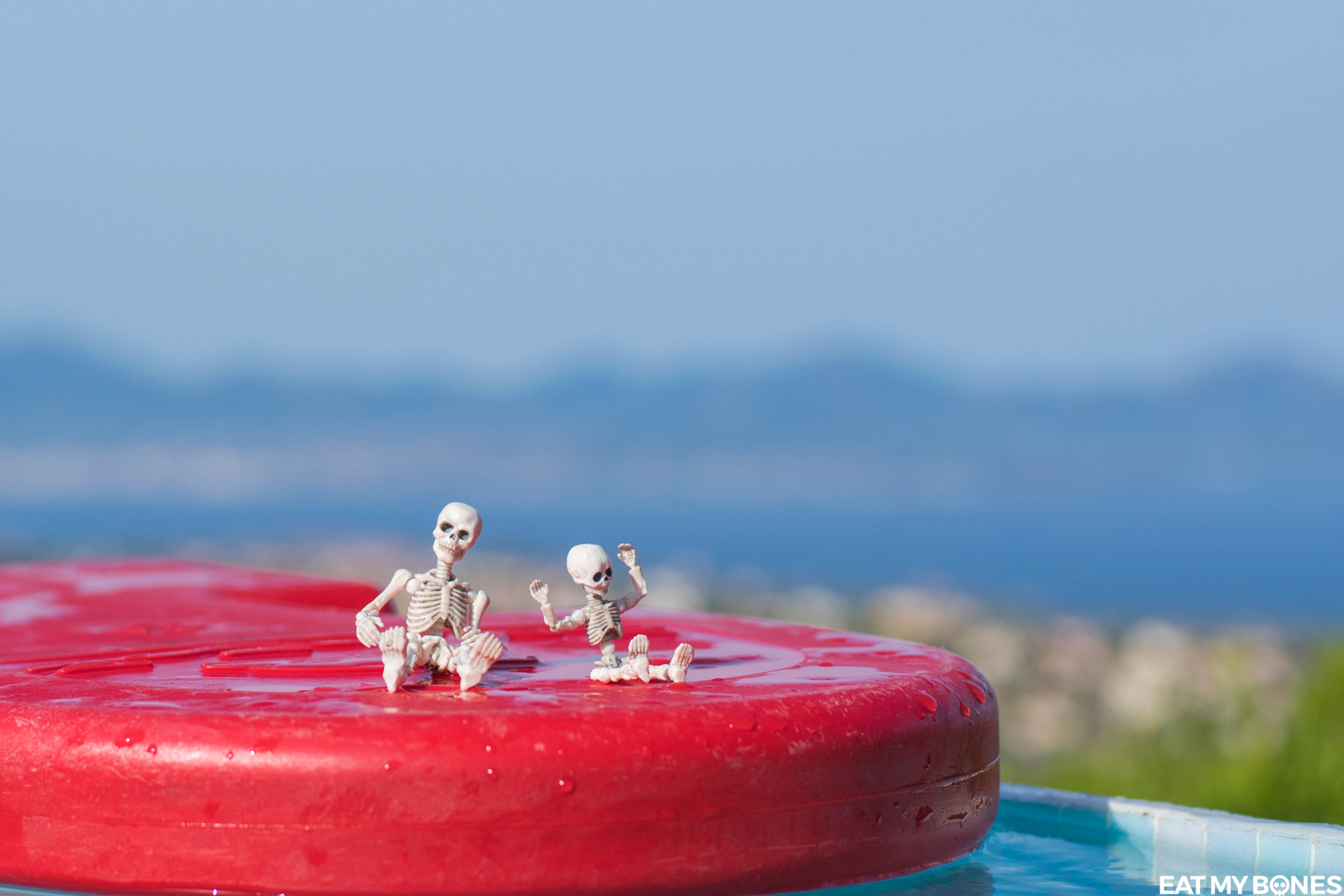 Swimming pool - Pose Skeleton - Toy photography - Miniature - Eat my Bones