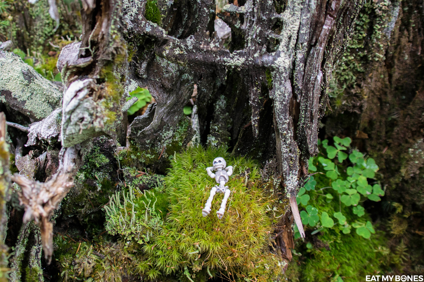 Alps walk - Pose Skeleton - Toy photography - Miniature - Eat my Bones