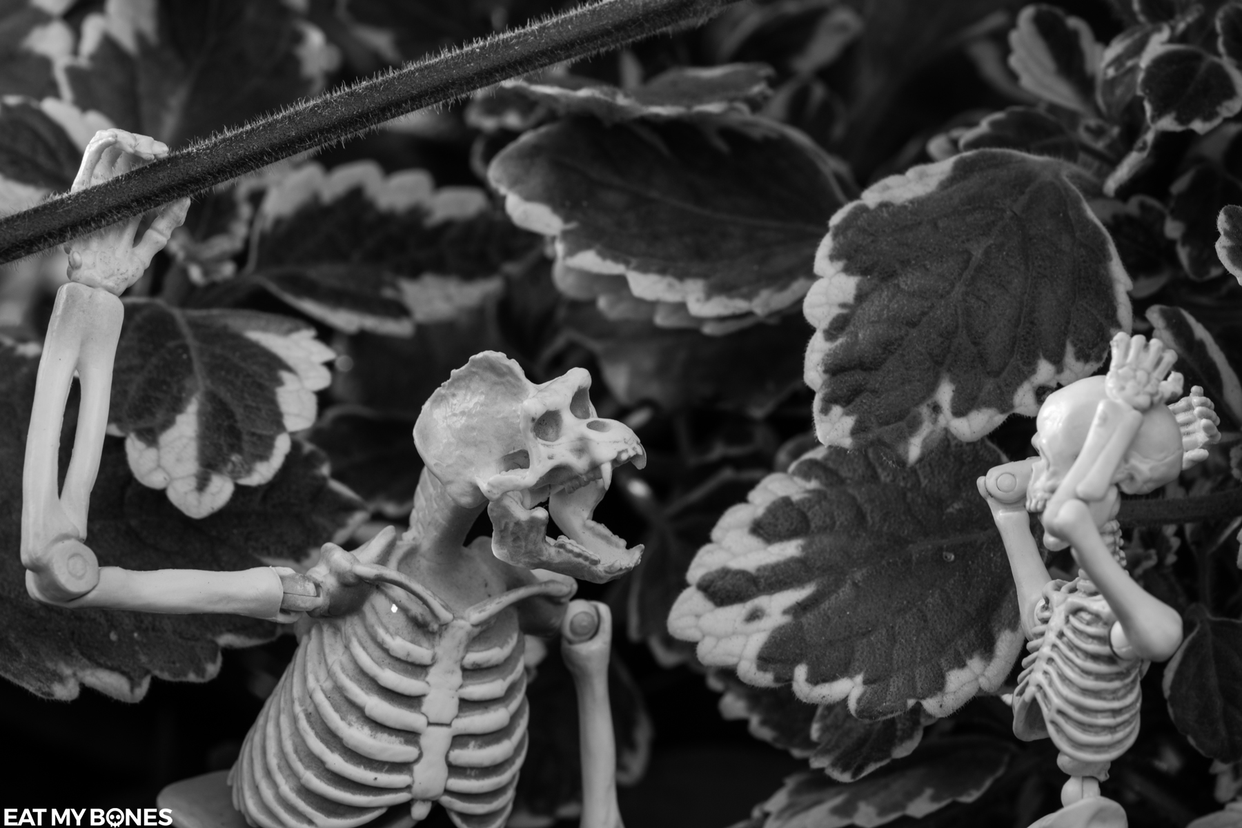 Fear Gorilla - Pose Skeleton - Toy photography - Miniature - Eat my Bones