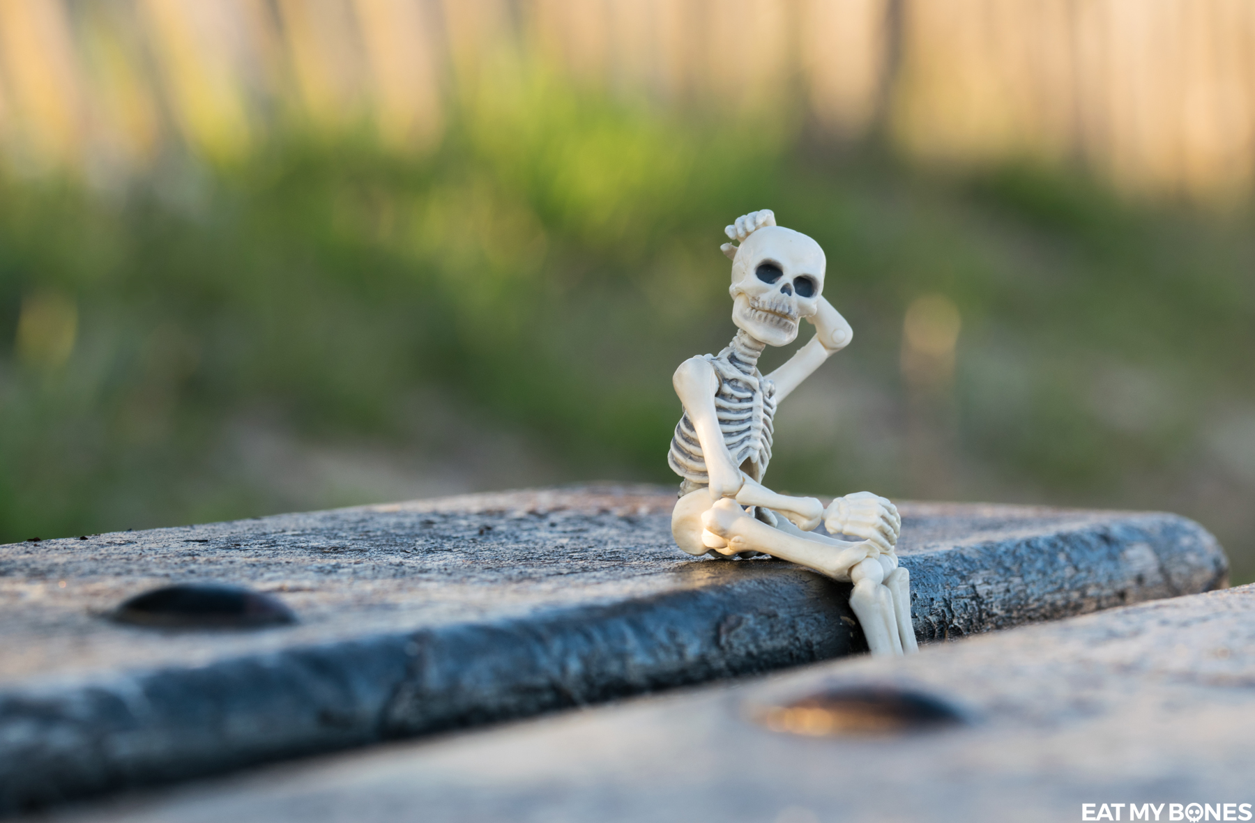 Bench - Pose Skeleton - Toy photography - Miniature - Eat my Bones