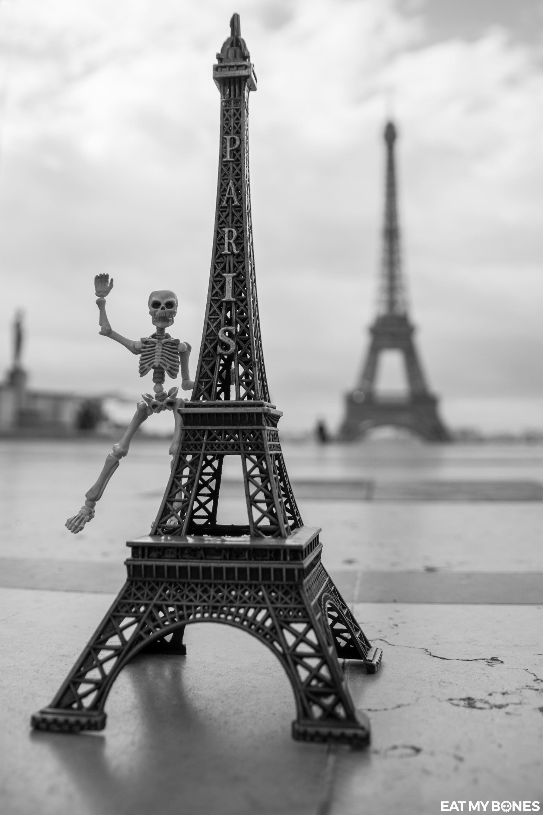 Stuck in Plastic Paris Eiffel tower - Pose Skeleton - Toy photography - Miniature - Eat my Bones