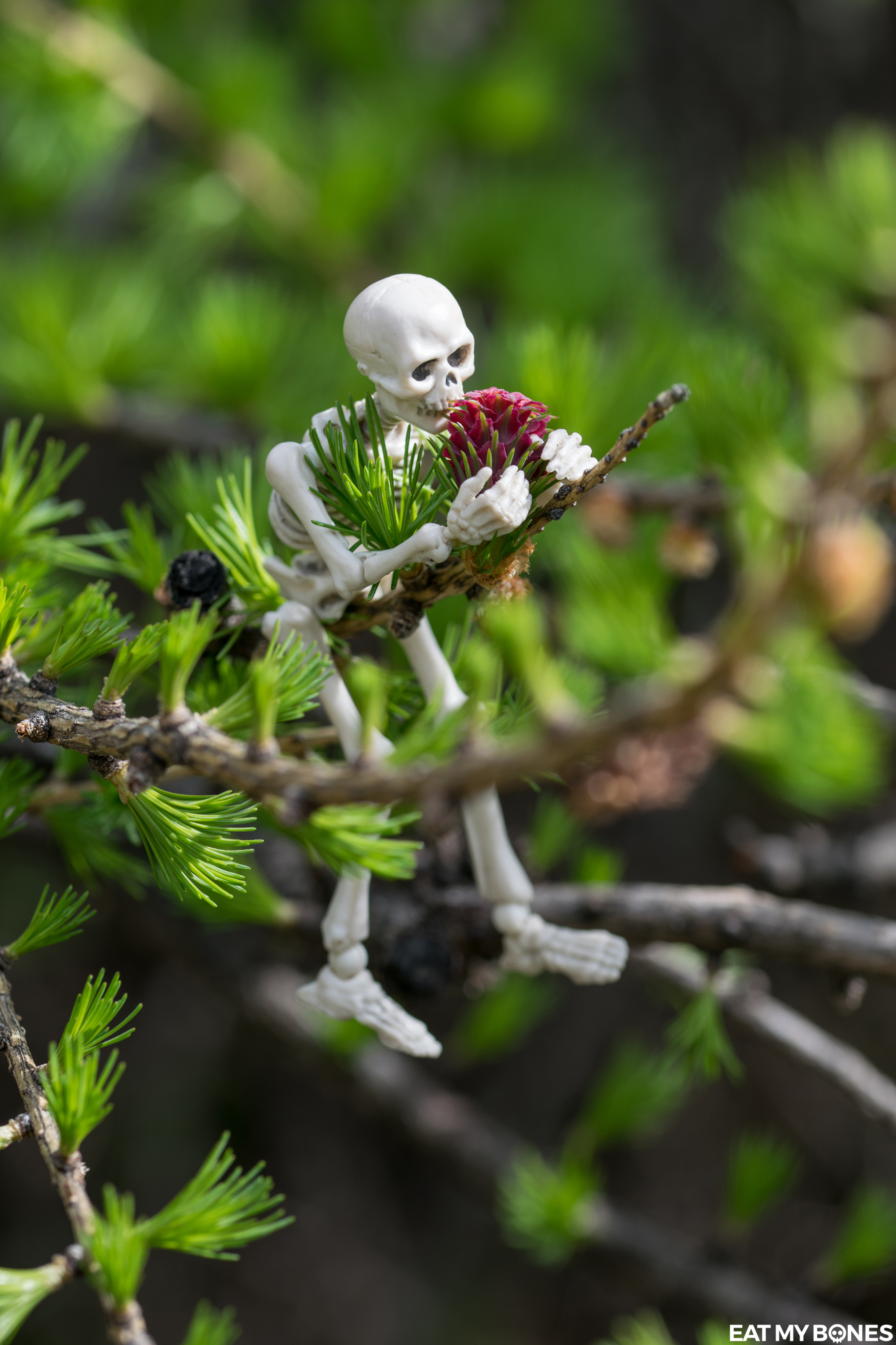 Alps - Pose Skeleton - Toy photography - Miniature - Eat my Bones