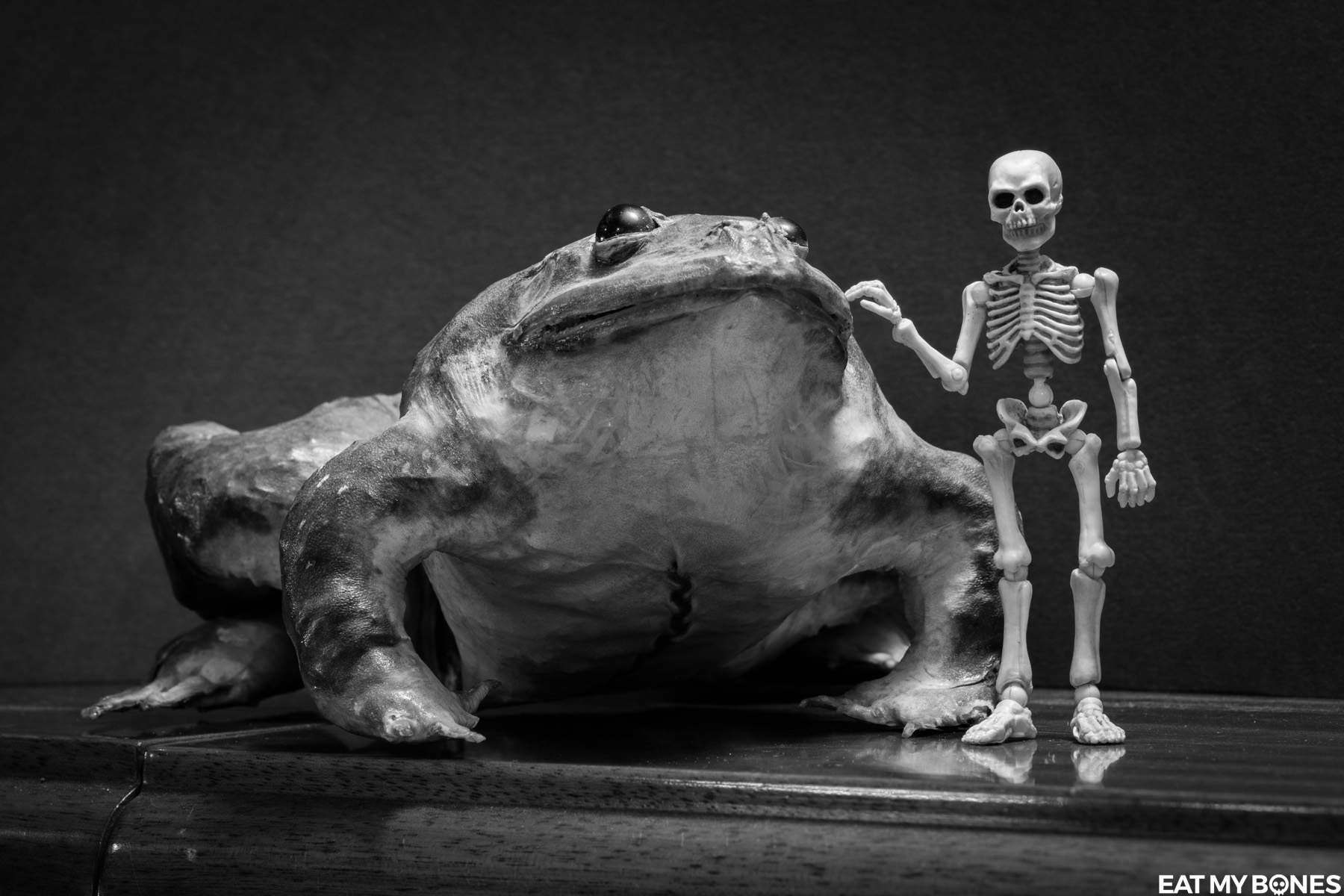 7 Tattoo - Pose Skeleton - Toy photography - Miniature - Eat my Bones