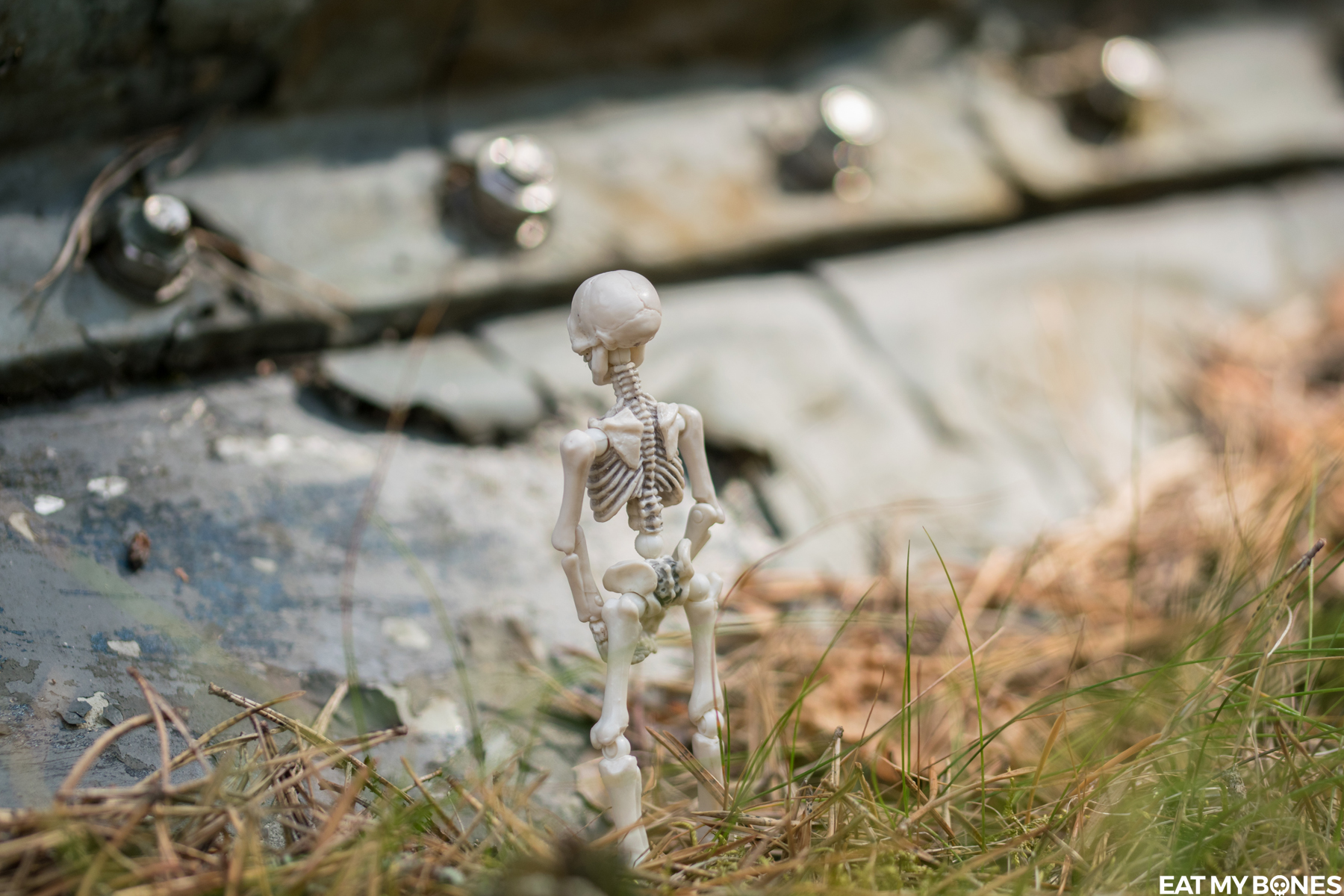 Sweden - Forest - Pose Skeleton - Toy photography - Miniature - Eat my Bones